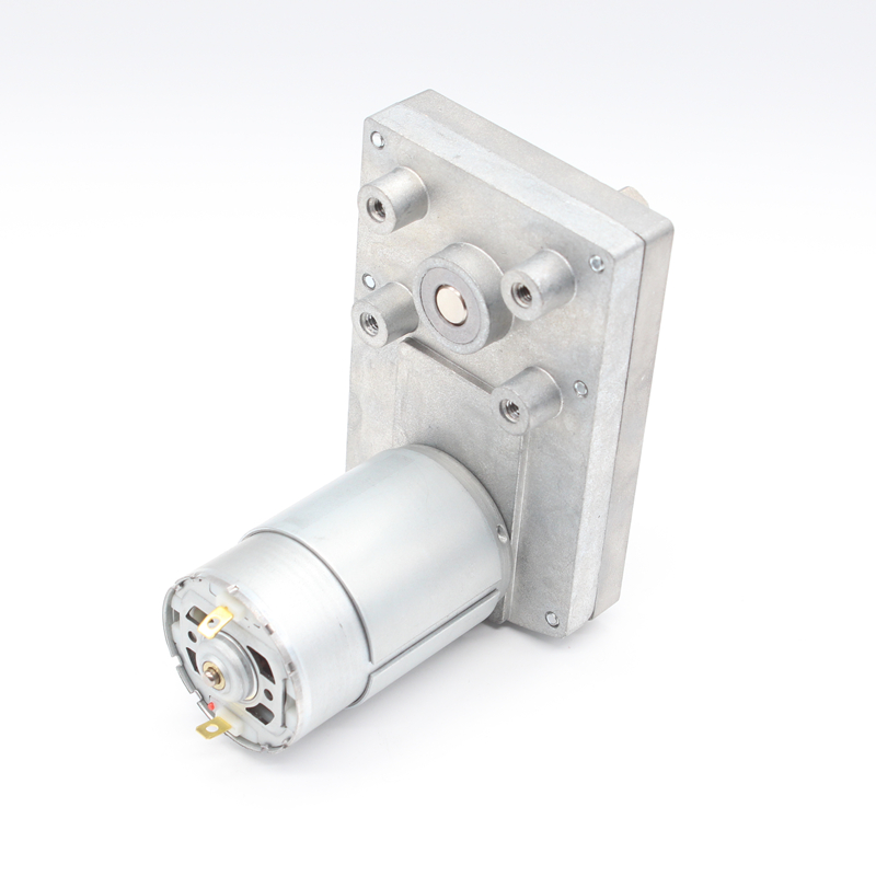 DC Parallel Gear Motor(RS555-PAG6095)